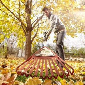 Gardening Services Glenelg