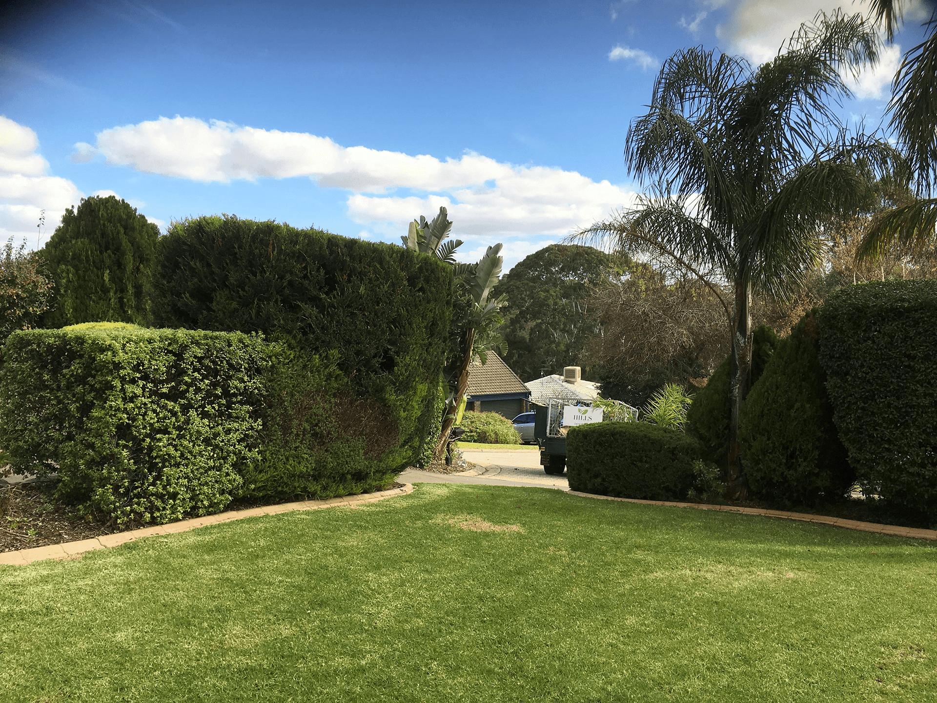 Hills Adda Instant Garden : Mowing edging hills garden service